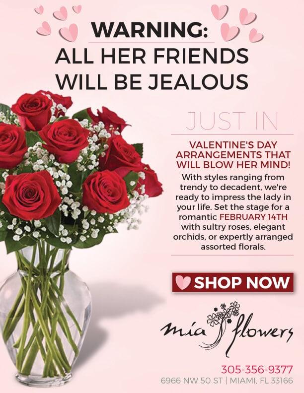 Valentine's Day Promo Graphic