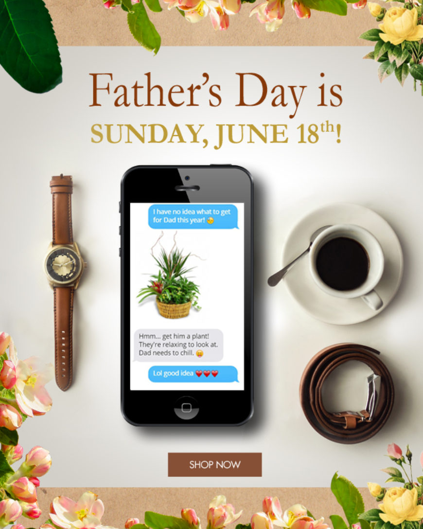 Father's Day Email Campaign